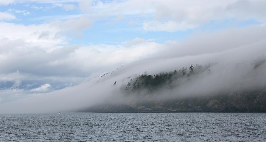 heather nicholson - Fog Island-web.png