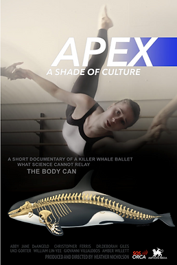 Apex, A Shade of Culture