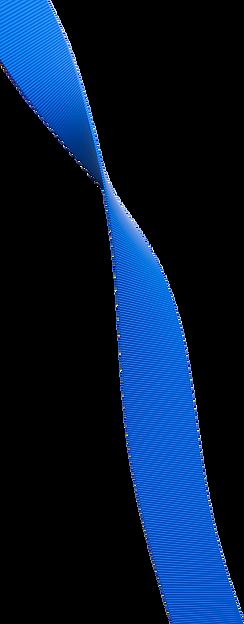 2021-fauxPassRibbon2.png