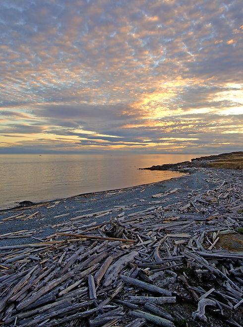 DSC_01697-shoreline.jpg