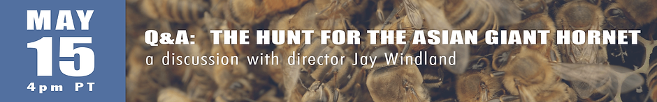 filmmakerQAbanner-THE HUNT.png