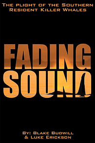 Fading Sound Poster #2.PNG