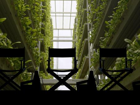 Filmmaker Q&A:  Vertical - The Future of Farming