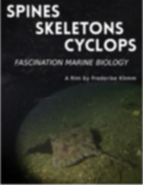 spines skeletons cyclops.png