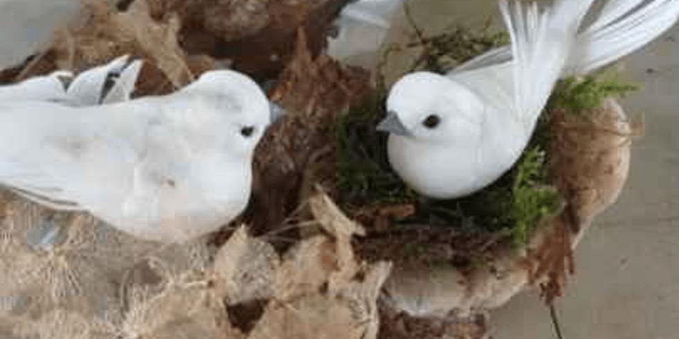 Family Art Packs: BUILDING BIRD NESTS