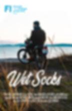 Wet Socks-poster.jpg