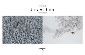 treeline.png