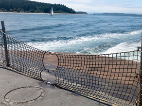 Ferry Advisory Committee: Your on-ramp for shaping ferry policy