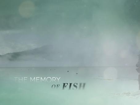 THE MEMORY OF FISH - Artist Statement