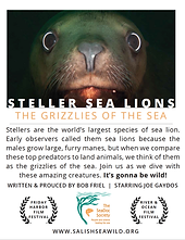 grizzlies of the sea.png