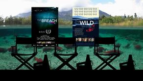 Filmmaker Q&A:  The Breach & The Wild