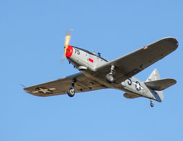 PT-19 in flight (1).JPG