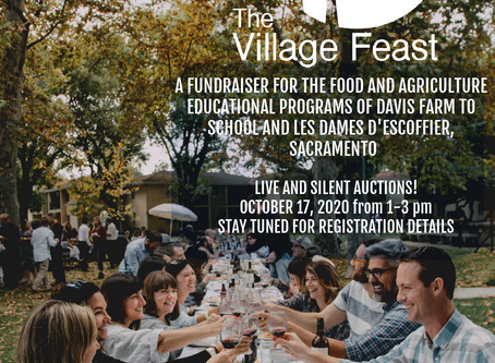 SAVE THE DATE- Village Feast October 17th