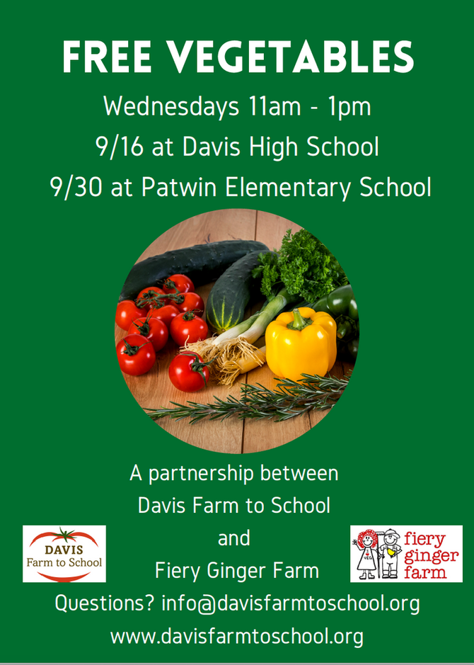 Davis Farm to School and Fiery Ginger Farm Partner to Provide Free Veggies to Students!