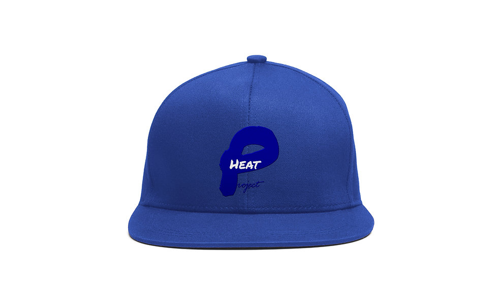 Royal Blue and Blue Project Heat Snapback