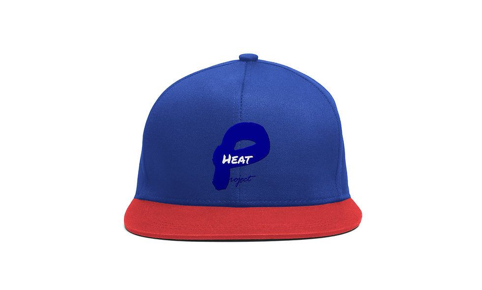 Blue and Blue and white Project Heat Snapback