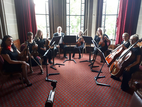 Abney Strings perform at wedding