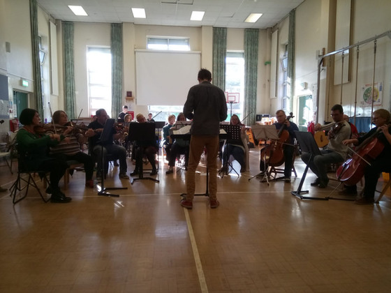 Orchestral Training Day