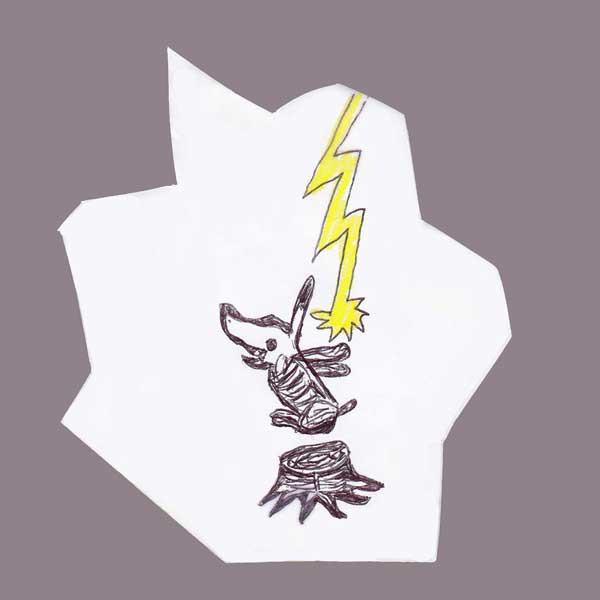 2007 Lightning
