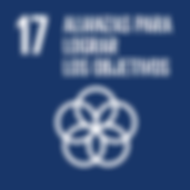 S_SDG-goals_icons-individual-rgb-17.png