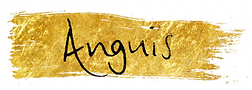Anguis title and back.png