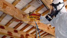 Normativa que han de cumplir los tratamientos de la madera