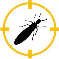 plaga termitas barcelona