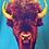 Thumbnail: Buffalo Stare on Aqua - Women's fit