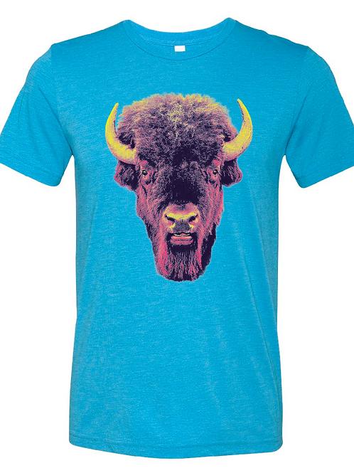 Buffalo Stare on Aqua