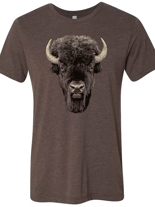 Buffalo Stare on Brown