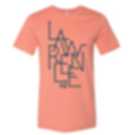 Lawrence KS zag on pink.jpg