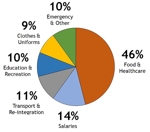 Expenditure Pie Chart.png