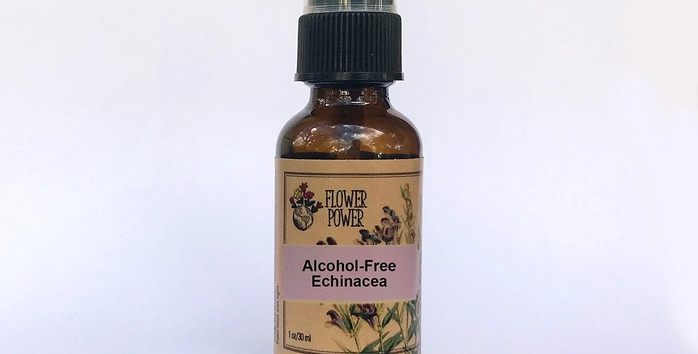 Alcohol-Free Echinacea