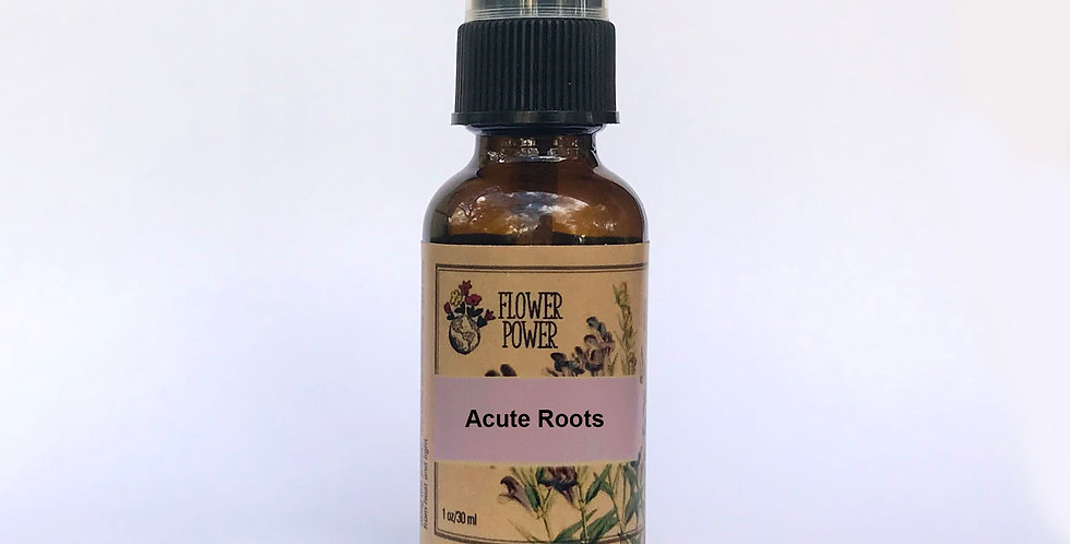 Acute Roots