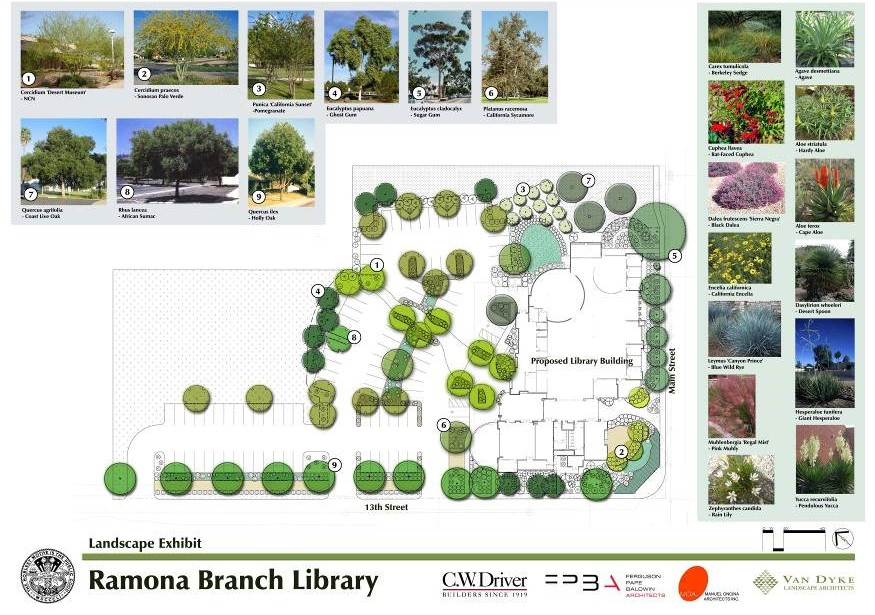 04-Ramona Library.jpg