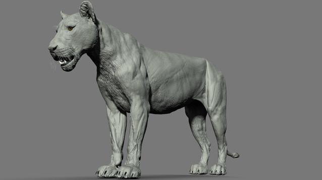Lioness T Pose