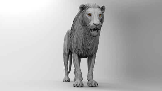 Lion T Pose