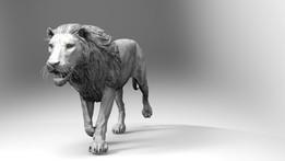 Lion Pose Run