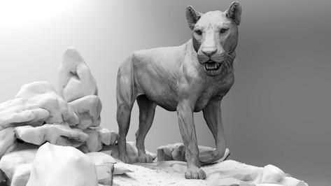 Lioness pose on terrain