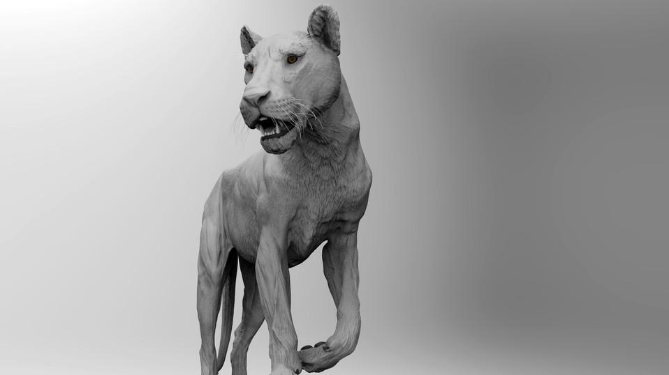 Lioness Pose 1