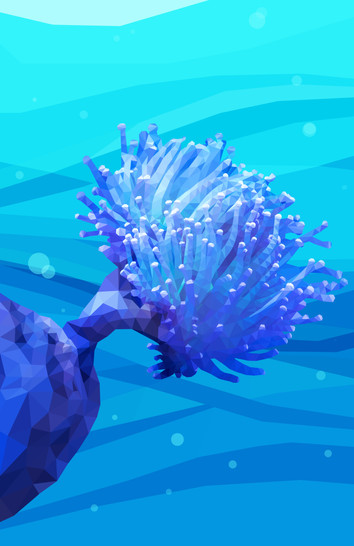 Coral Polyp
