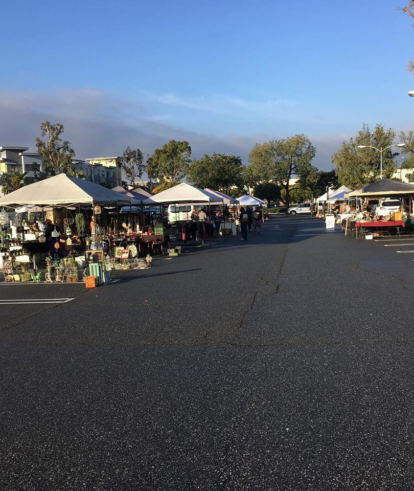 See us in our new location~2600 Nutwood Ave~Fullerton