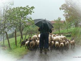 Buscar ajuda pode ser uma tarefa árdua para muitos pastores!