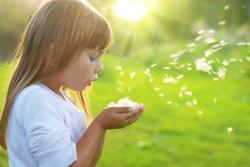 Soins Energétiques Enfants