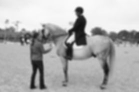 Amy Howard Dressage Training, New Jersey offers full service boarding, dressage training, sales and showing