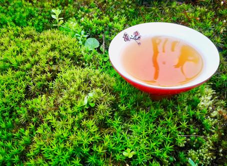 Blog 14: The Moss Fragrance in Tea
