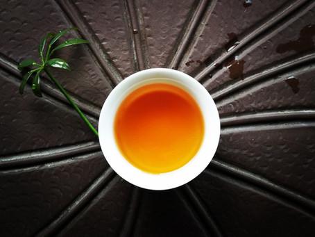 Blog 107: Clay Tea Pots Can Ruin Your Tea