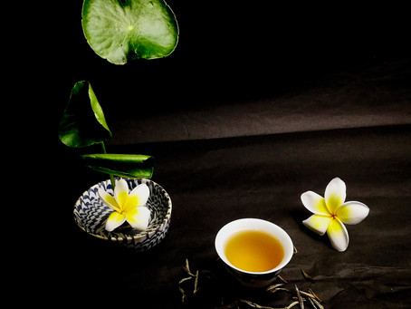 Blog 23: White Tea - The Oldest and The Youngest Tea of All