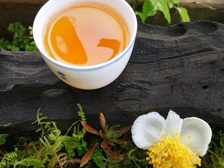 Blog 73: Every Tea Has Its Prime Time