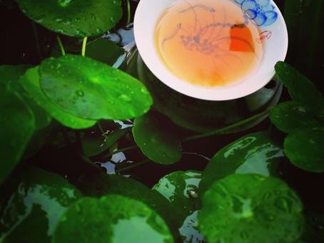 Blog 48: Tea for Autumn